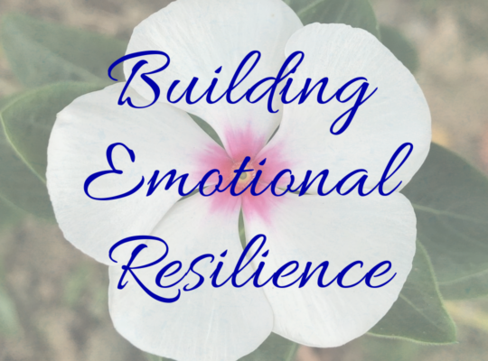 Building Emotional Resilience