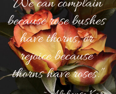 Thorns Have Roses 7/2/21 Daily Inspiration